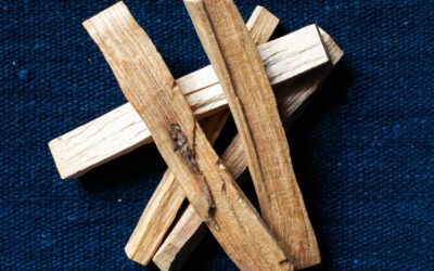 PALO SANTO for Energy Cleansing + Clearing